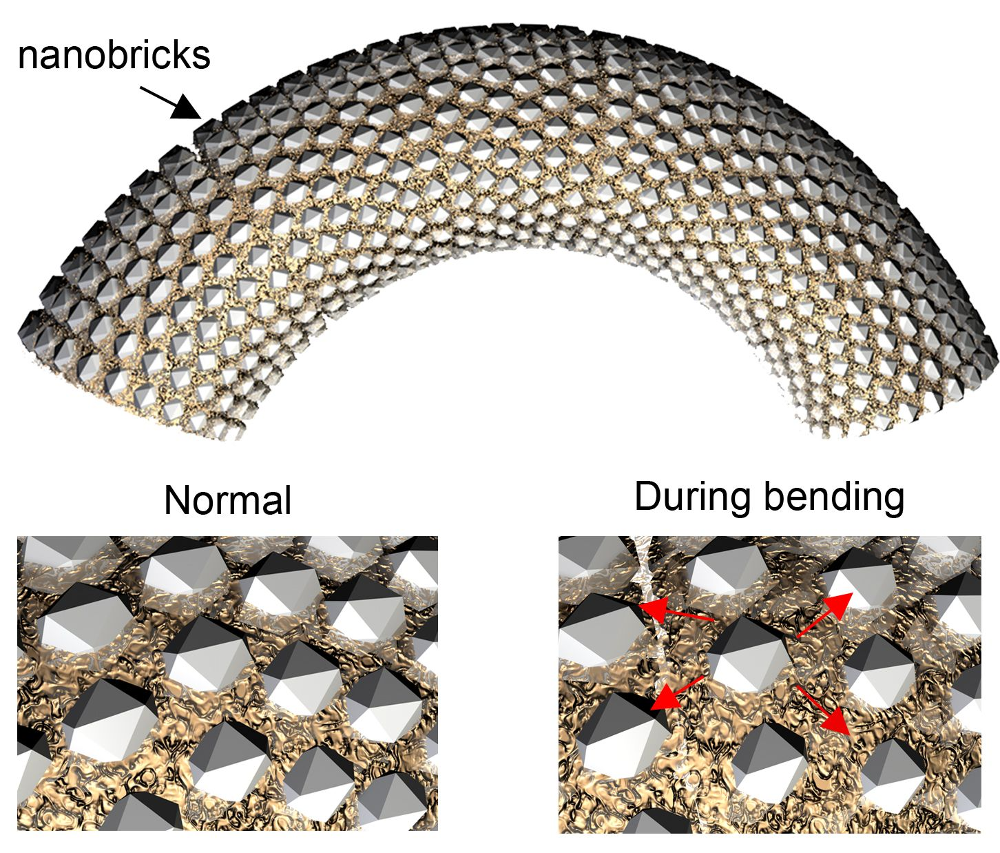 Flexible mineral created by nanobricks inspired by sea for Flexible roofing material